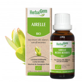 AIRELLE - 15 ml | Herbalgem
