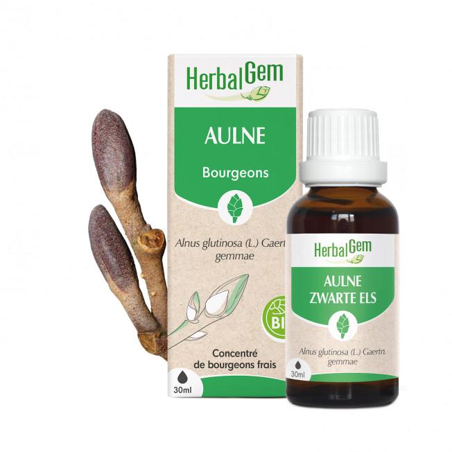AULNE - 15 ml   Herbalgem