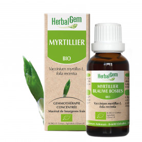 MYRTILLIER - 15 ml   Herbalgem
