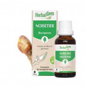 NOISETIER - 15 ml   Herbalgem