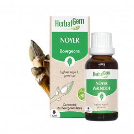 NOYER - 15 ml   Herbalgem