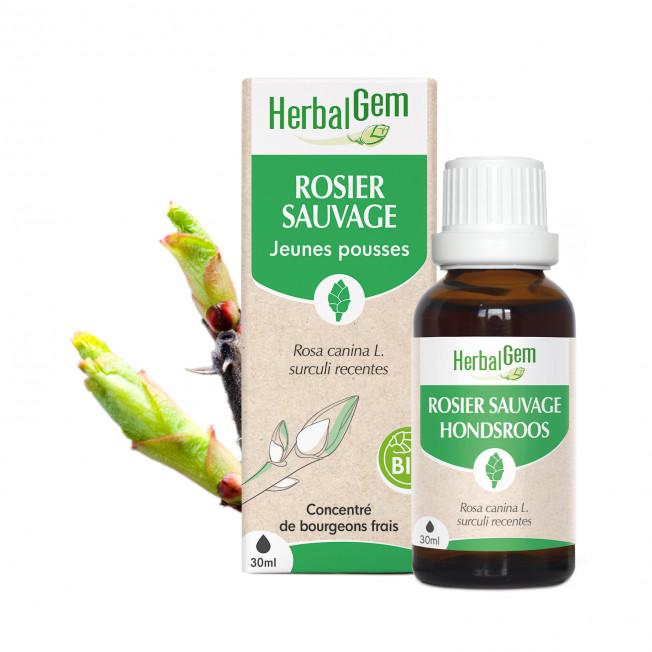 ROSIER SAUVAGE - 15 ml   Herbalgem
