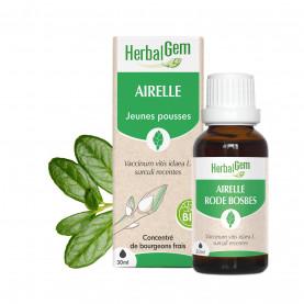 AIRELLE - 50 ml | Herbalgem