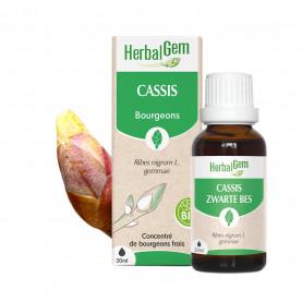 CASSIS - 50 ml | Herbalgem