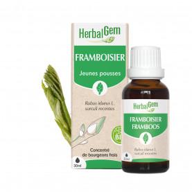 FRAMBOISIER - 50 ml | Herbalgem