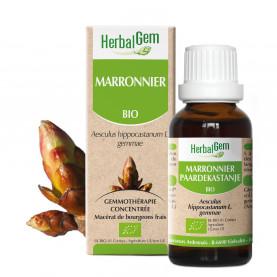 MARRONNIER - 50 ml | Herbalgem