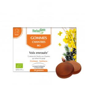 GOMMES CHANTRES - 24 gommes   Herbalgem