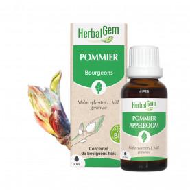 POMMIER - 30 ml | Herbalgem