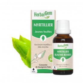 MYRTILLIER - 30 ml   Herbalgem