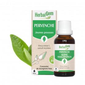 PERVENCHE - 30 ml   Herbalgem